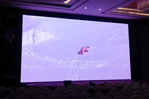 Benefits Of LED Walls Versus Projection Displays